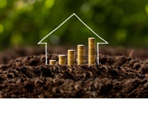 Home values soar up to 1500% since 1993