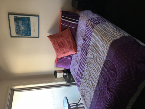 room with ensuite to rent